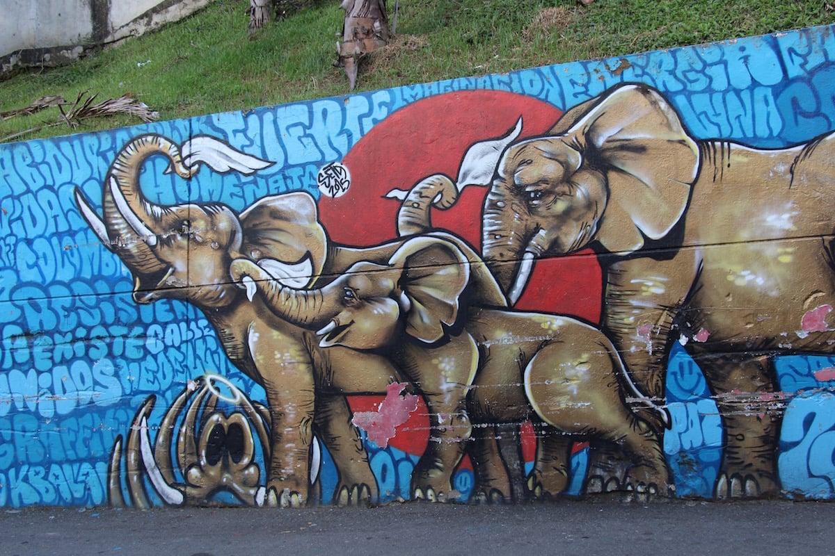 Graffiti of elephants