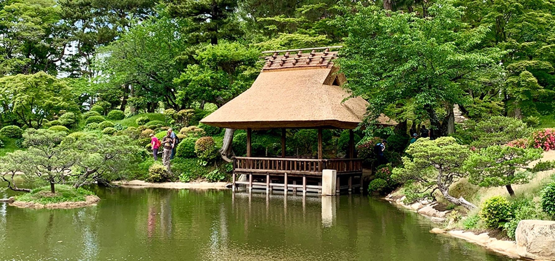 Pond in Japan